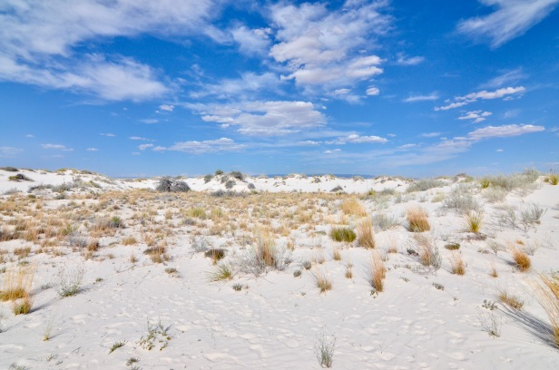 whitesand2